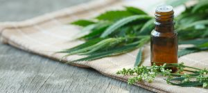 Medical Cannabis Therapy, Medicinal Marijuana